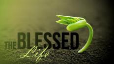 blessedlife