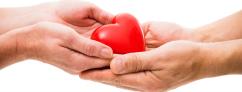 Organ-Donation1-1024x392
